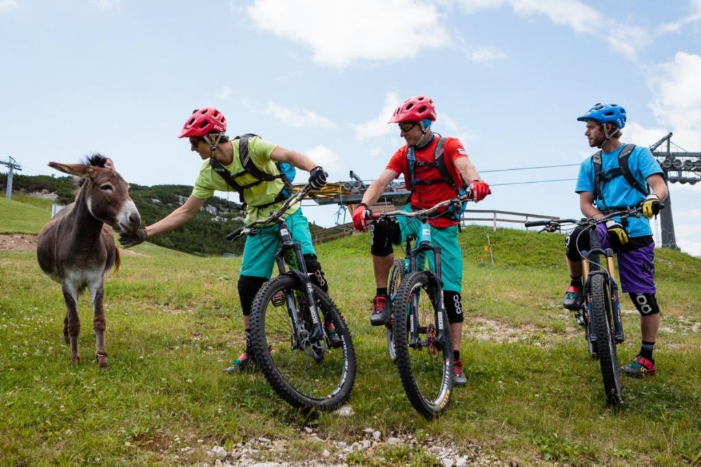 mountain bike Dolomiti Paganella Trentino 5