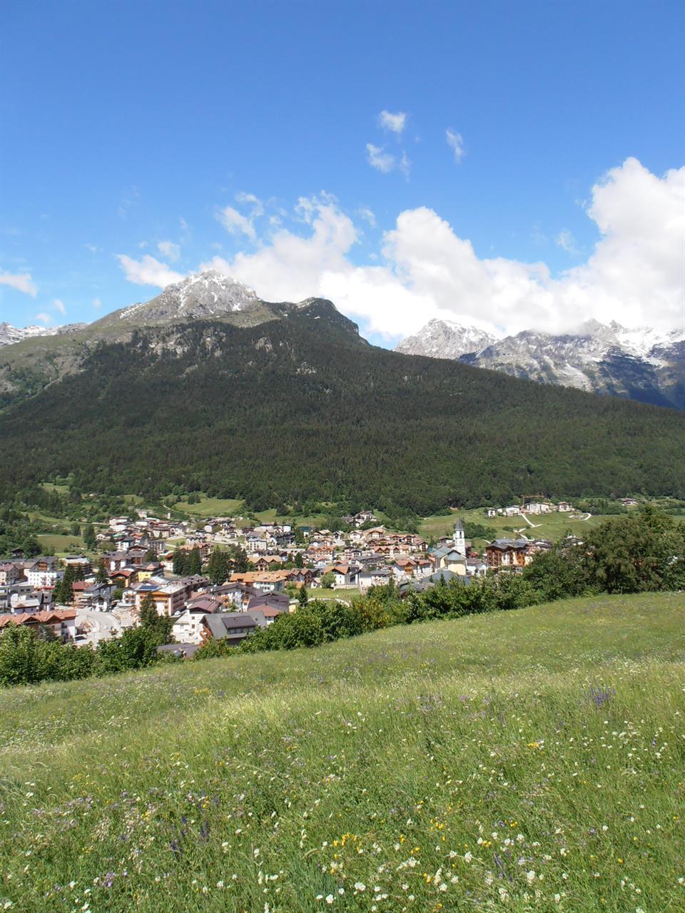 Andalo_prati_Francesco_ph.APT_DolomitiPaganella (1