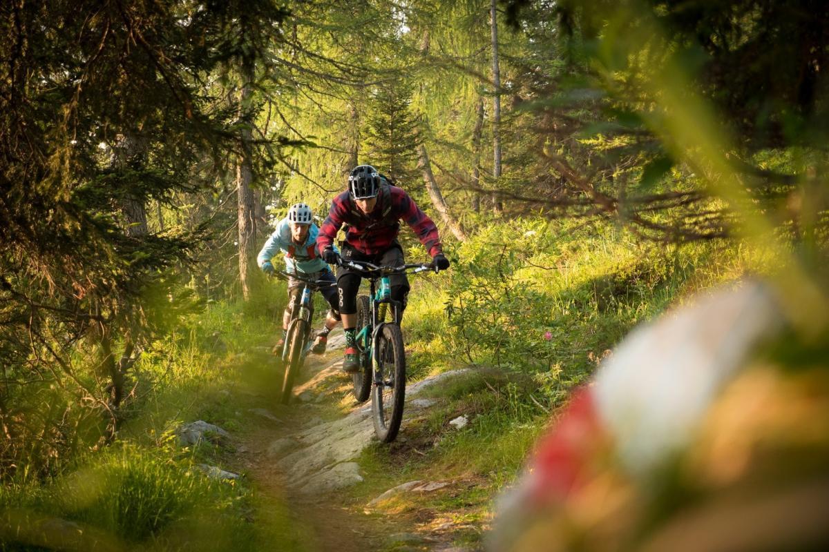 Bikers nel bosco