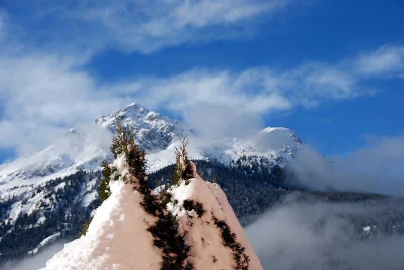 Residence Antares Andalo vicino piste da sci