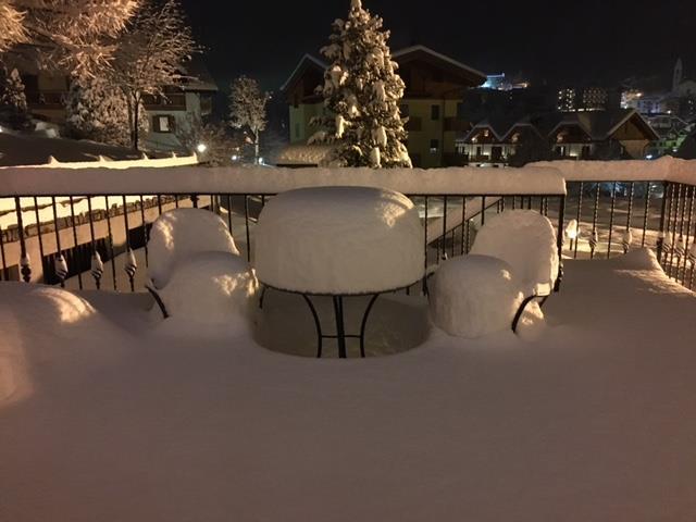 tanta neve in giardino