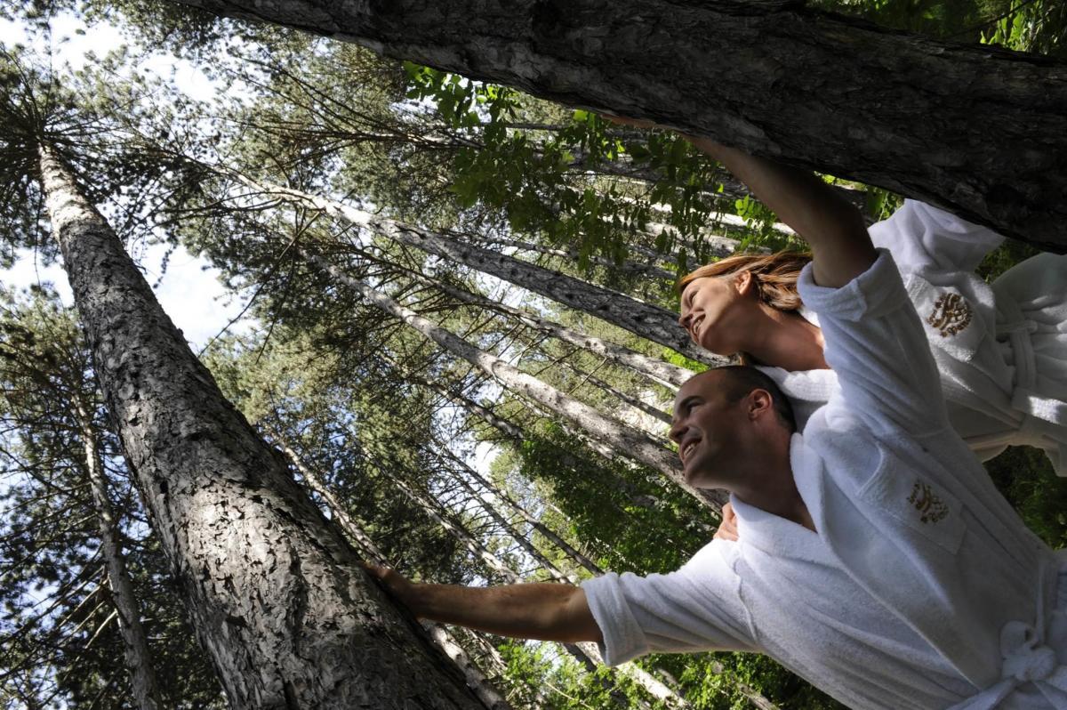 bosco bioenergetico (224)