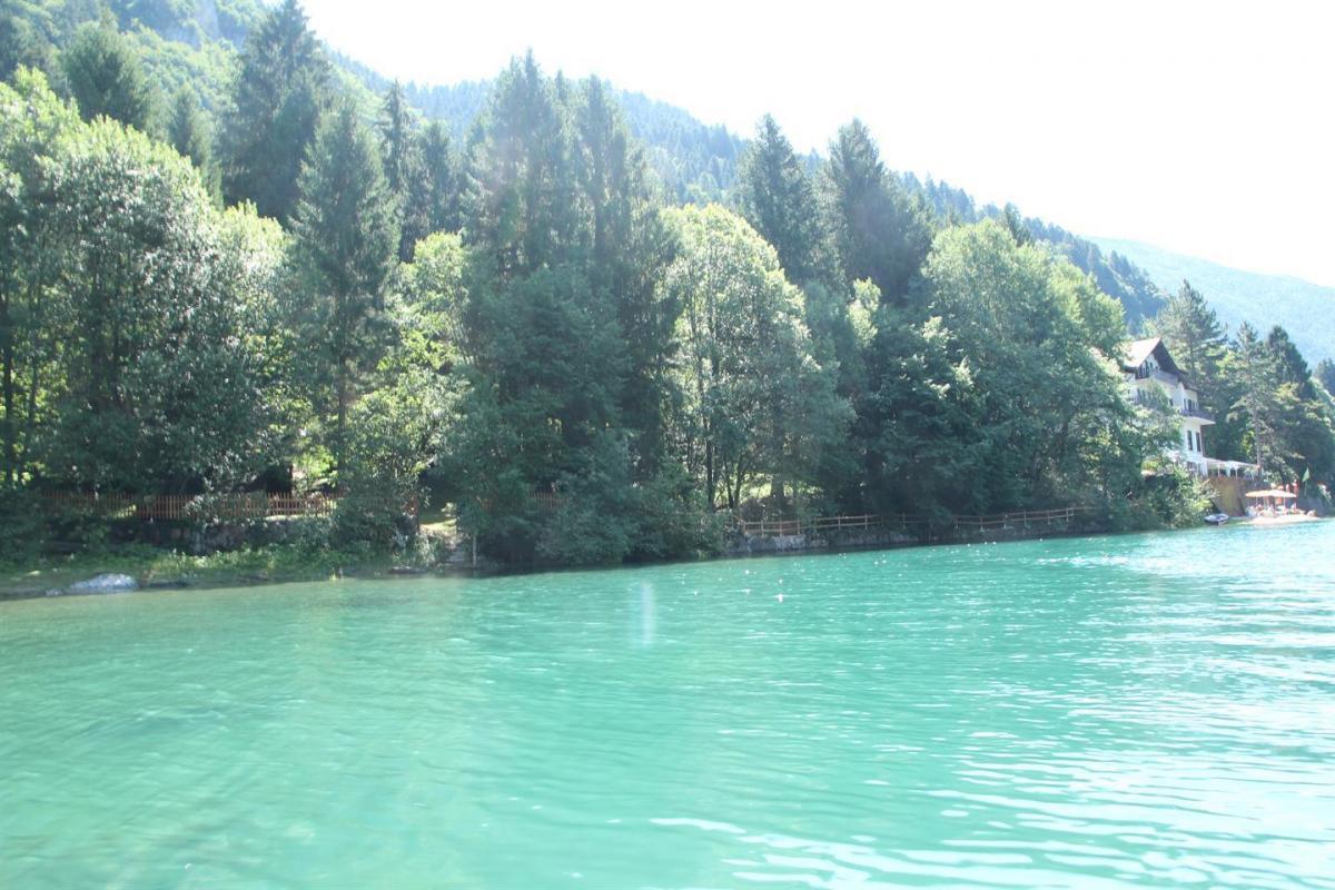 spizo da lago (2)