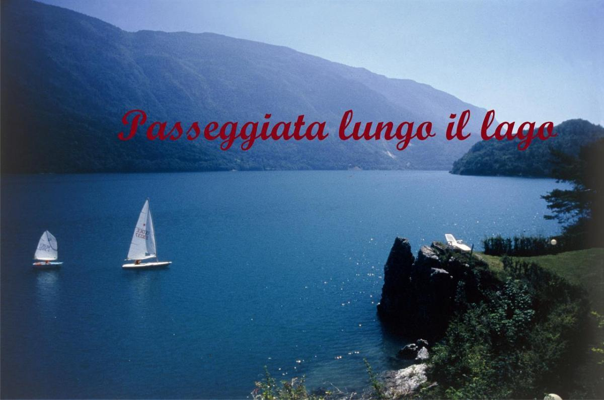 LAGO IN ESTATE