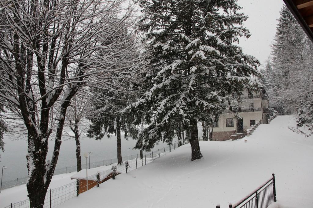 Lago Park nevicata