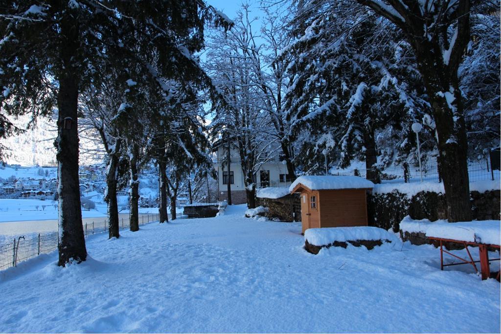 giardino winter