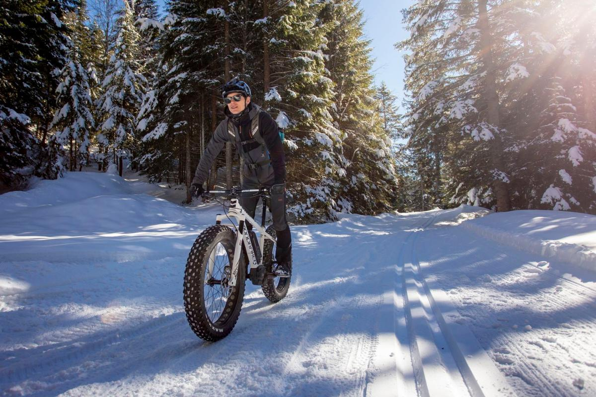 Con la Fat Bike nel bosco