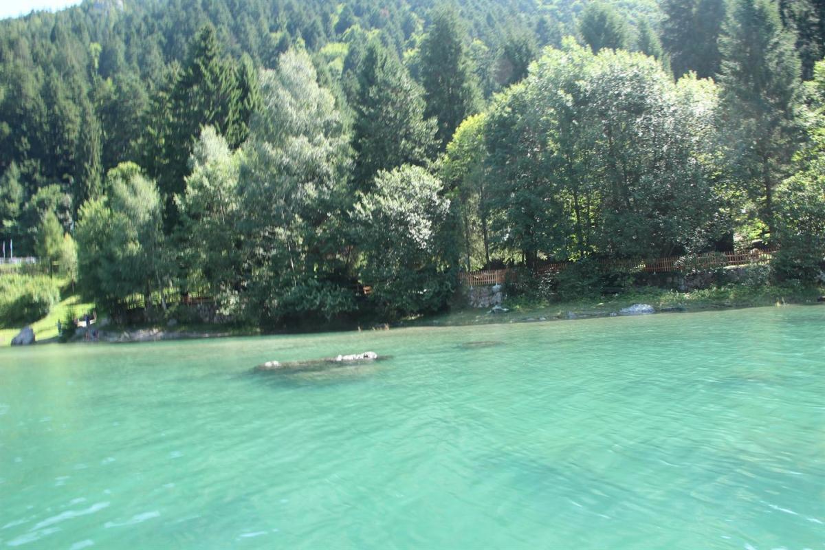 spizo da lago (3)