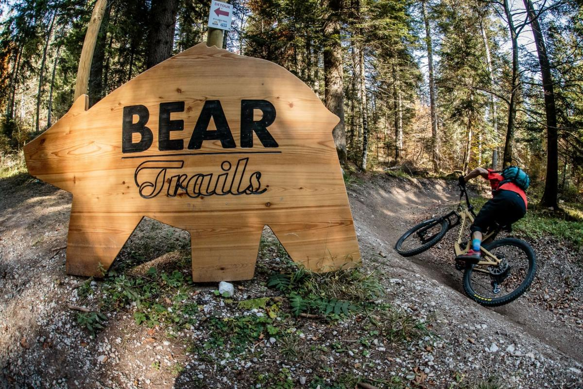 Iconico Bear Trails
