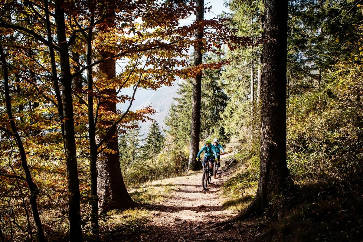 Dolomiti_Paganella_Bike_High_276