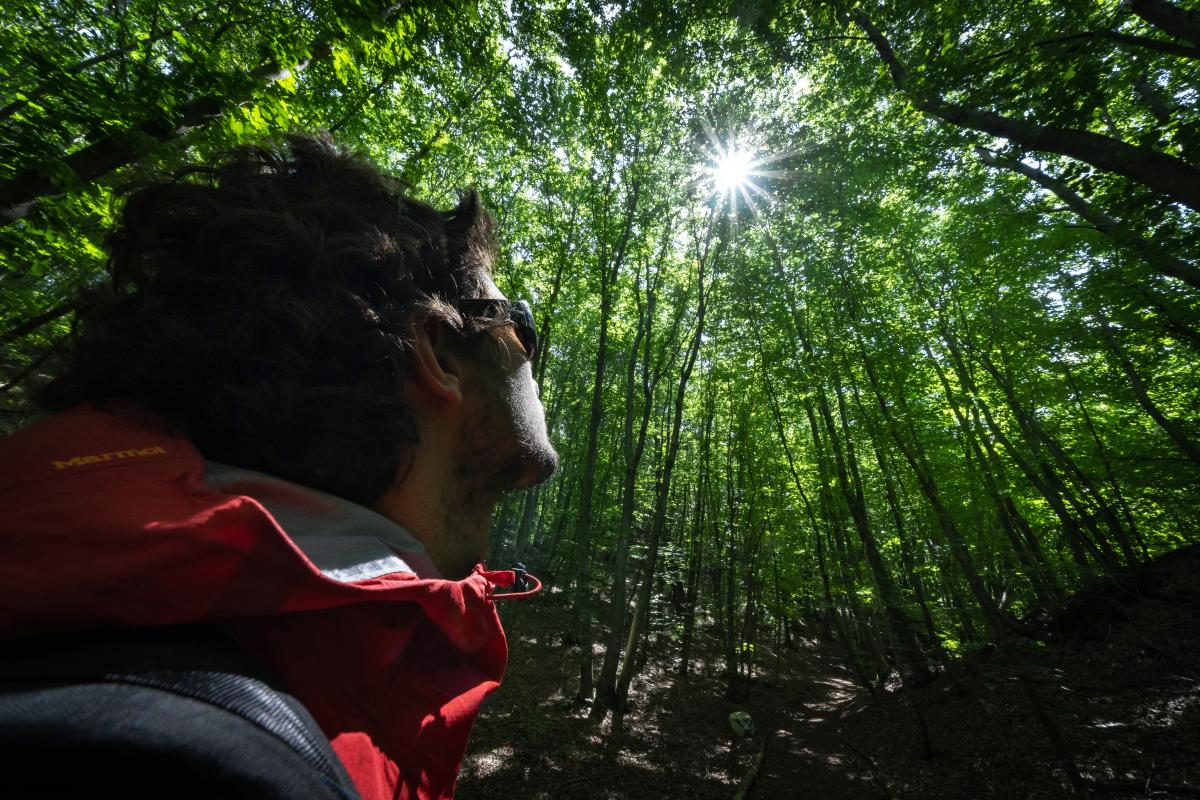 Forest Bathing Paganella_ph.Pini (5)