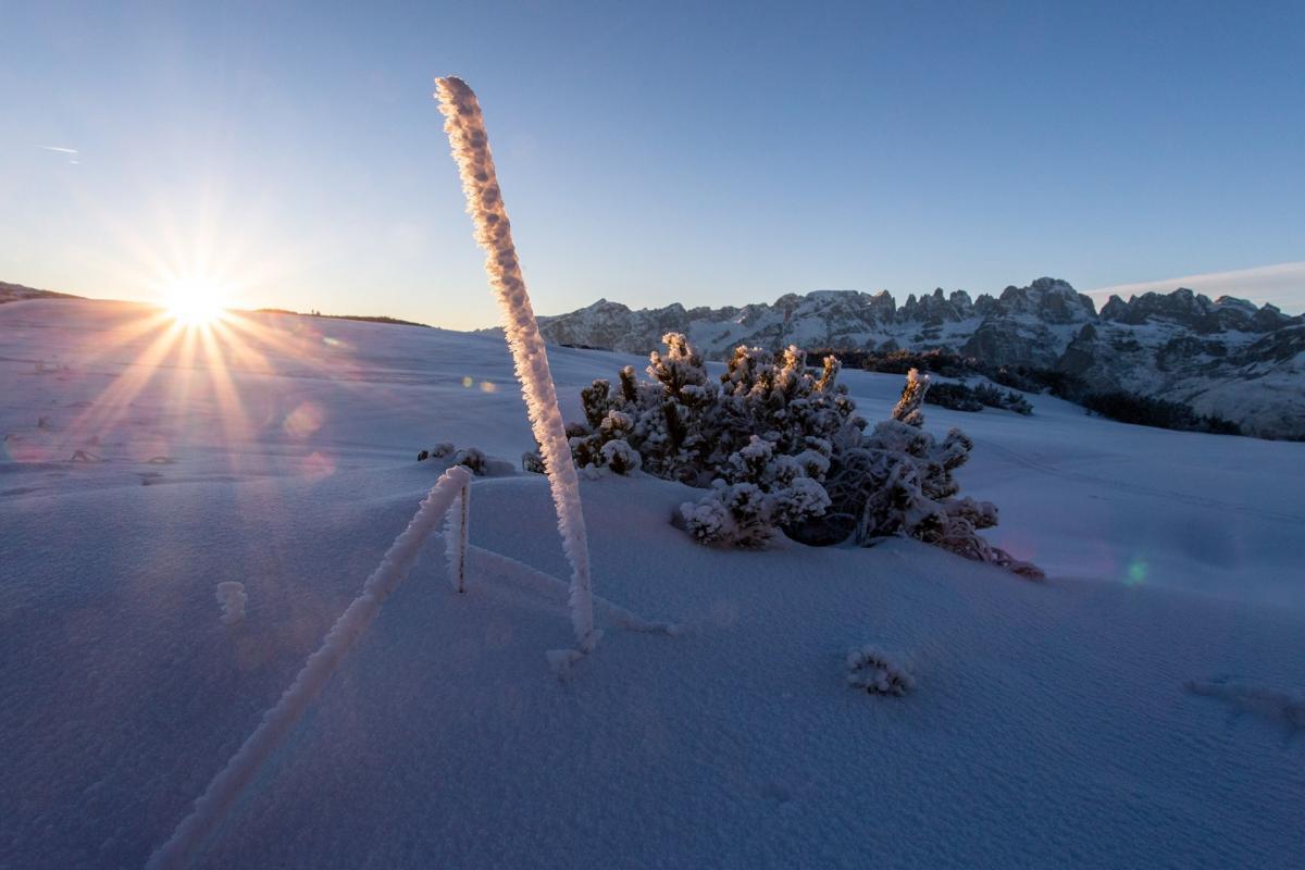 Frizzera - Inverno 18 19 (20)