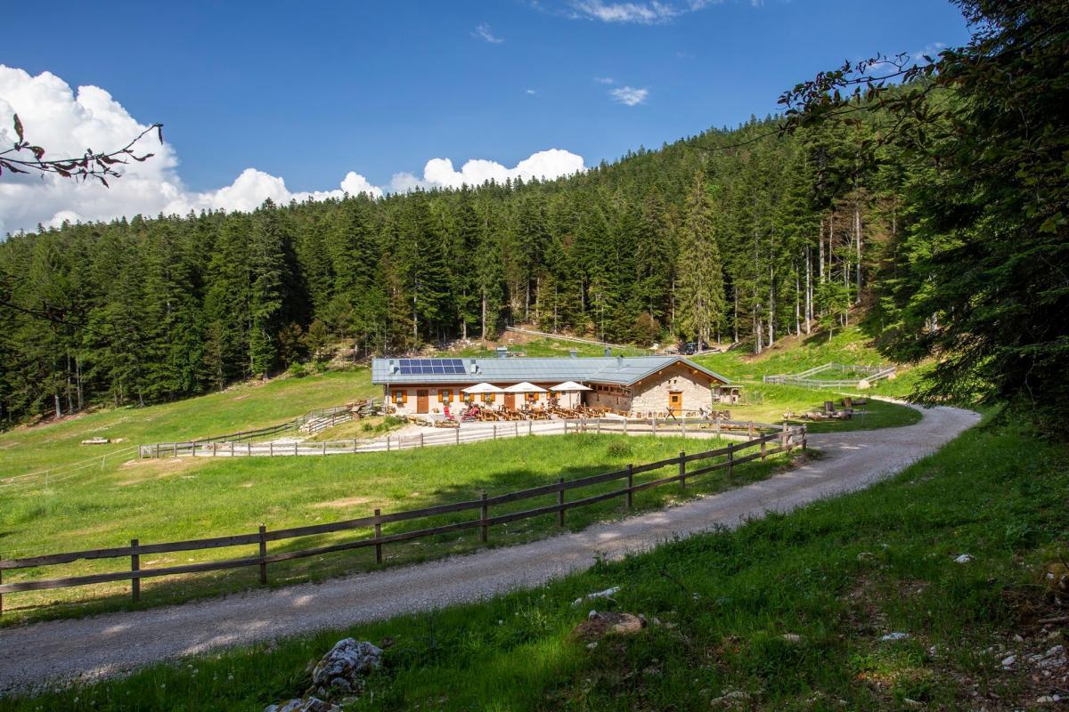 Malga Val Brenzi - Frizzera (2)