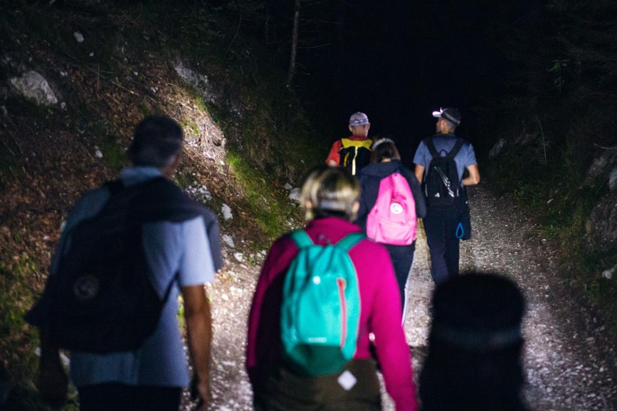 Trekking Notturno nel Bosco