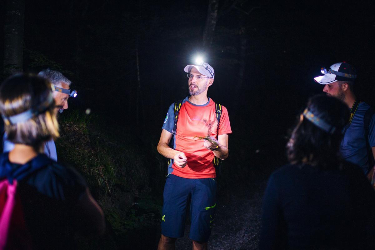 La Guida spiega al gruppo cosa si trova nel bosco