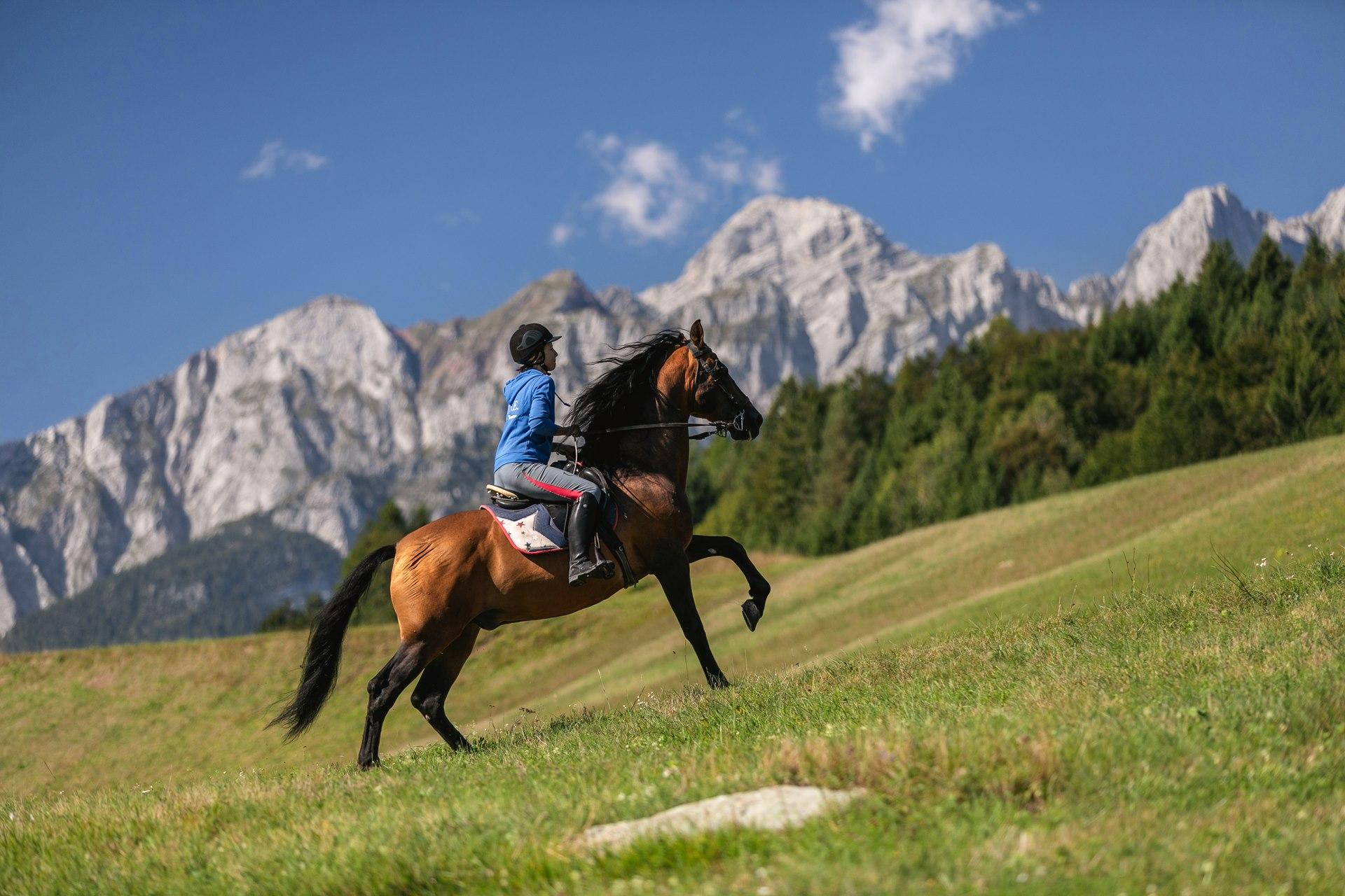 HORSEBACK RIDING IN THE DOLOMITES