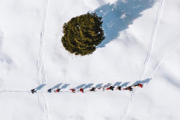Ciaspolare in Dolomiti Paganella: una guida alle cinque migliori escursioni