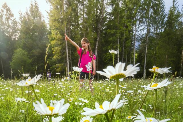 5 must-do activities for children in Dolomiti Paganella