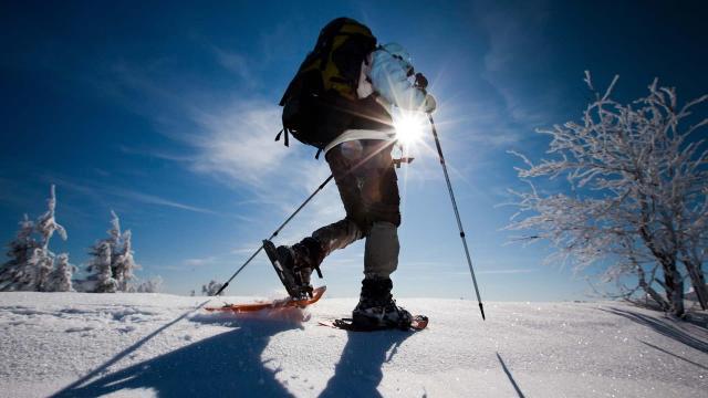 Vedi per chi non scia