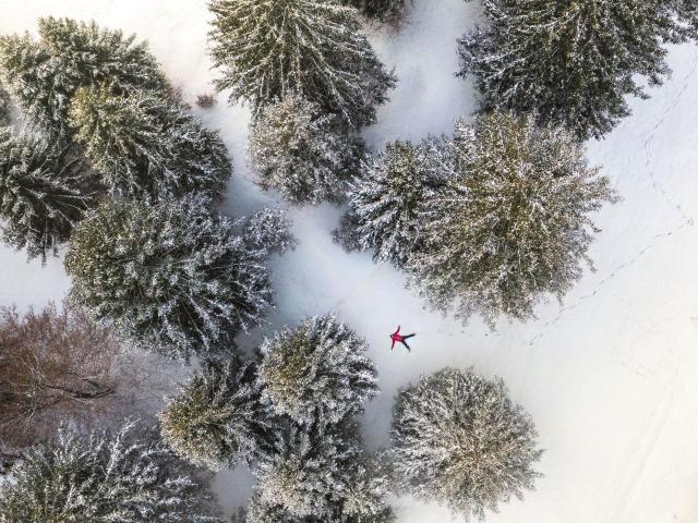 Dove respirare la magia delle feste in Dolomiti Paganella
