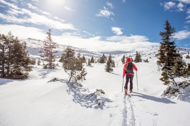 Ski Mountaineering and Freeriding