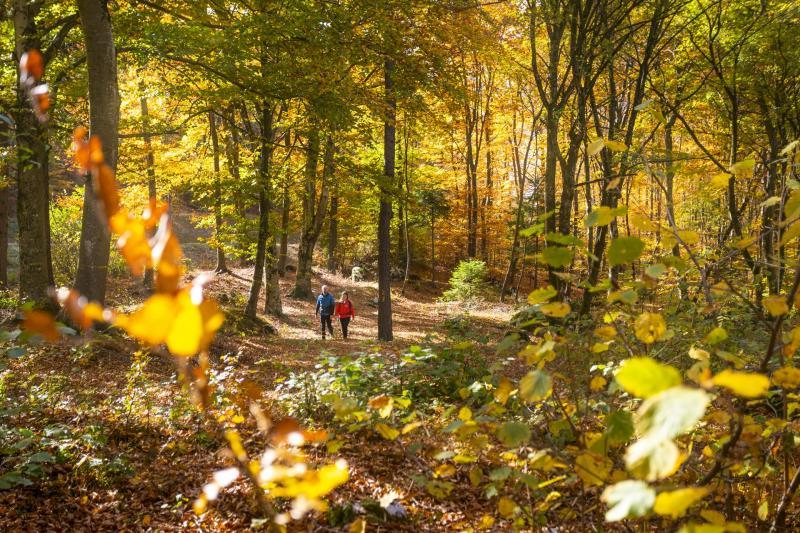 Autumn in the Dolomites
