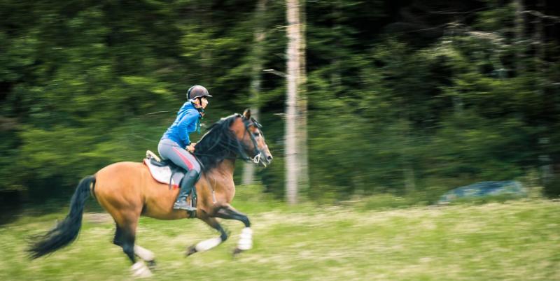 Equitazione sulle Dolomiti