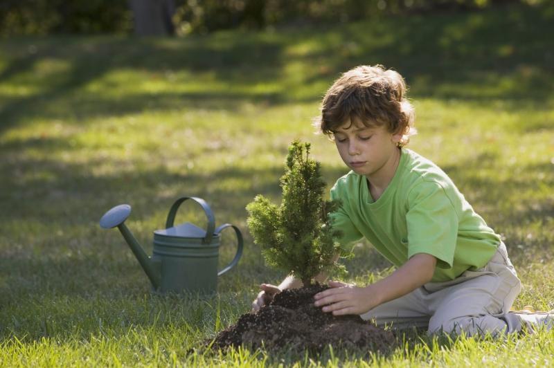 Pflanze deine Zukunft