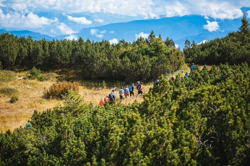 I 5 sentieri imperdibili a Orme, il Festival dei Sentieri