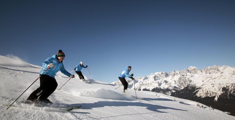 Skischulen