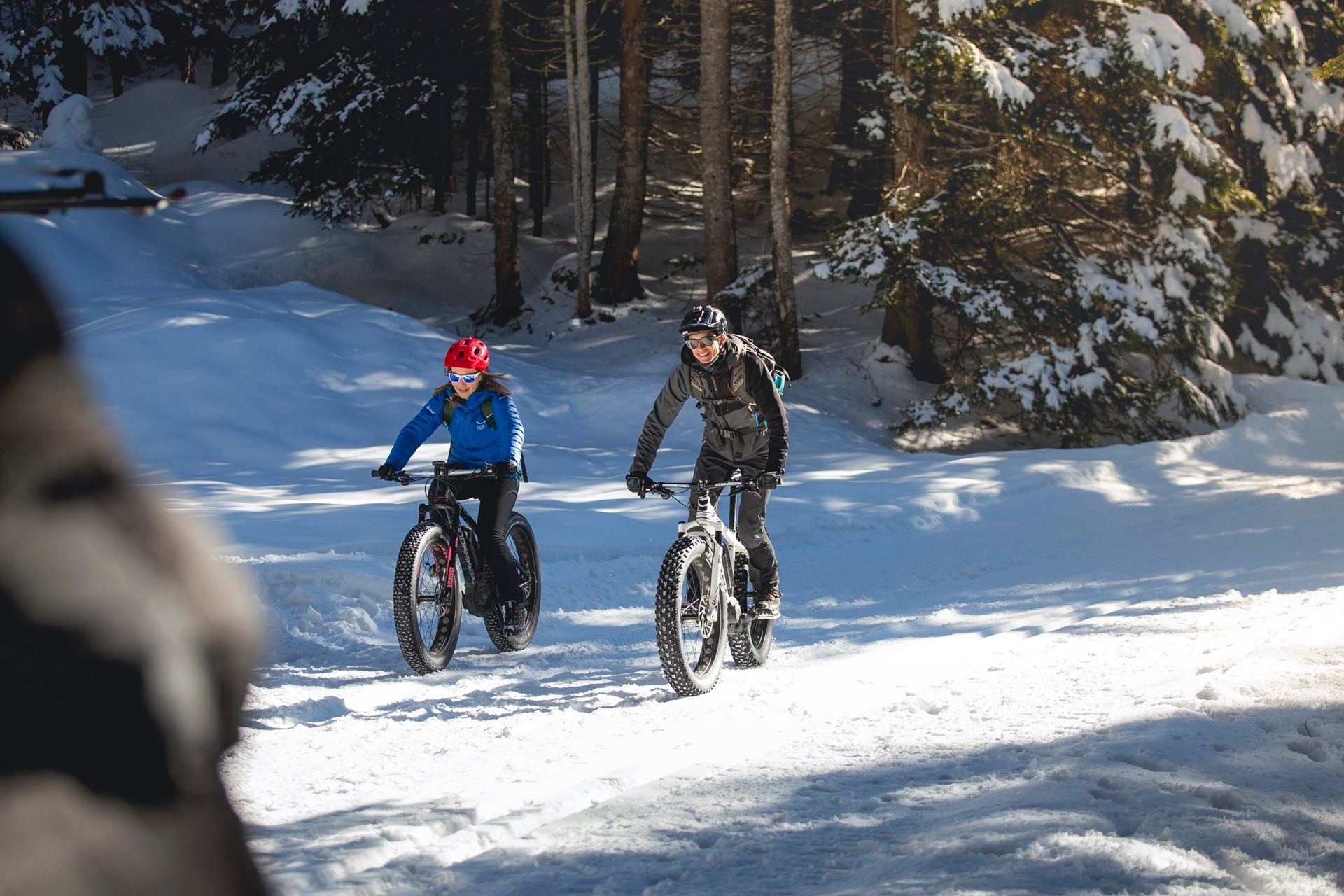 Easy Electric Fat Bike Tour