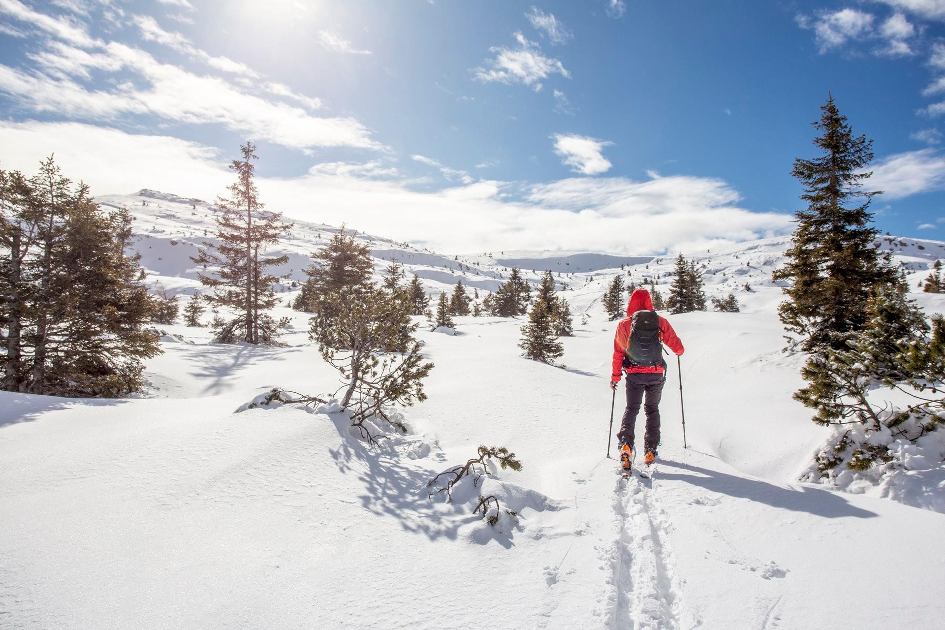 Sci Alpinismo e Freeride